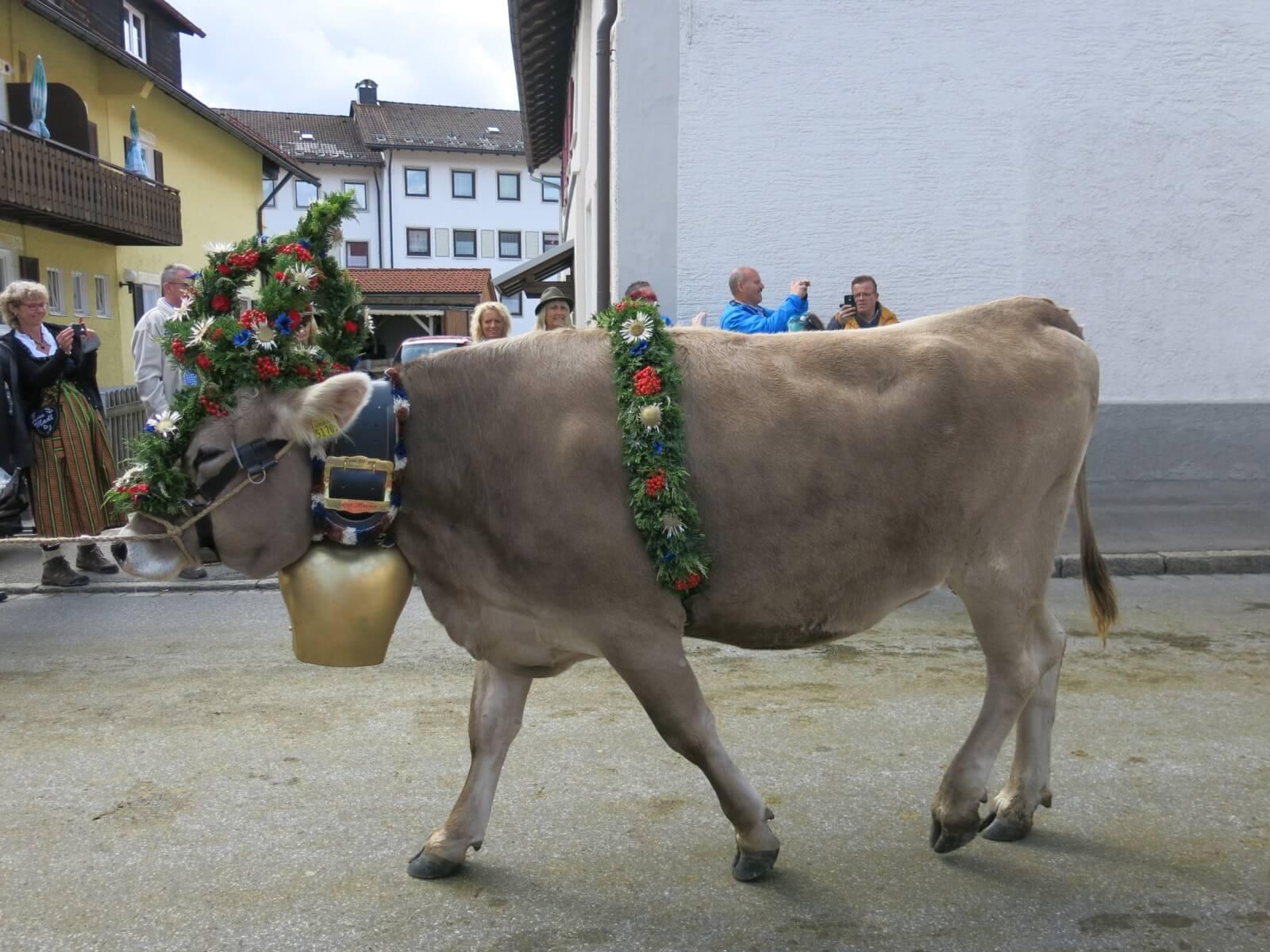 Bichlerhof Viehscheid